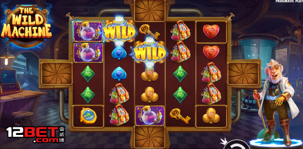 Slot Game The Wild Machine
